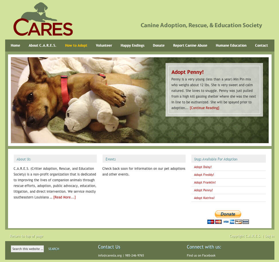 cares-before