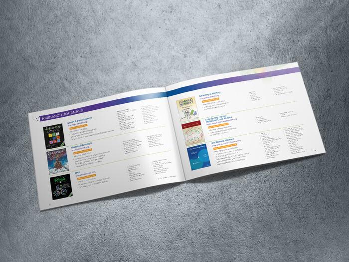 Media kit spread design