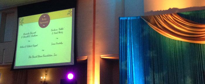 nonprofit event rotating backdrop slides